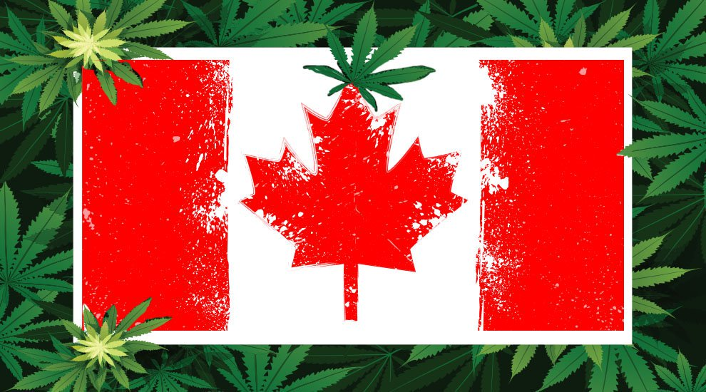 Canada: Crypto Firm to Build a Blockchain Supply Platform for Cannabis