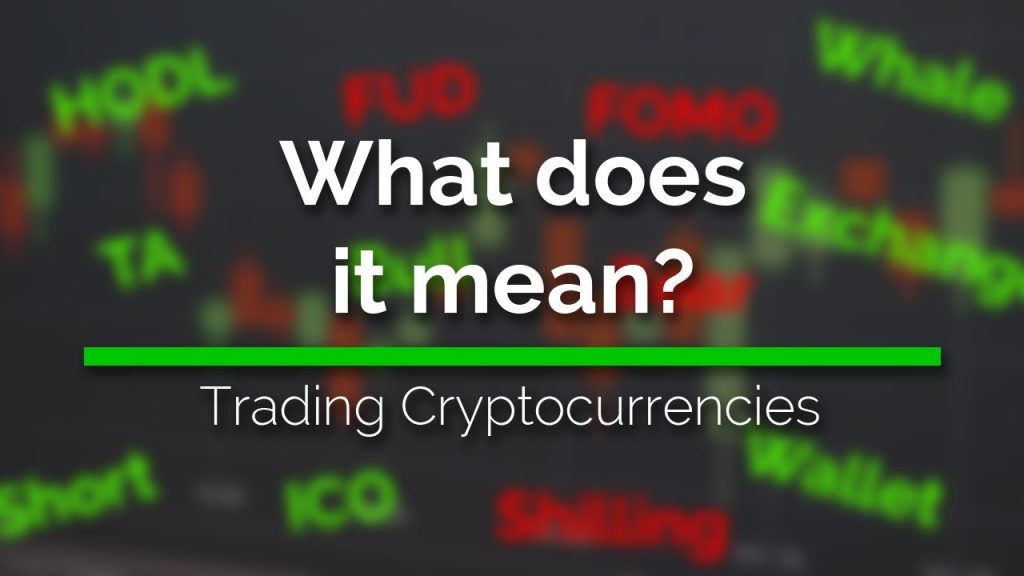 The Complete Beginner's Guide to Cryptocurrency Terms and Slang